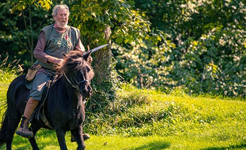 The image shows and icelandic horse and her Viking ridee.